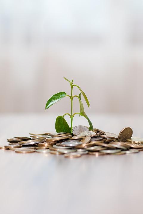 Куда или во что инвестировать деньги в 2020 году